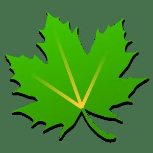 greenify meilleurs concepts
